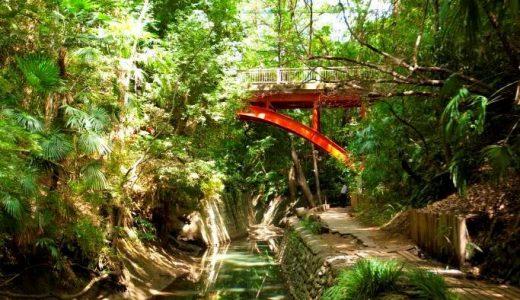 限られた時間で自然を感じる。東京から近い自然スポット特集。 -等々力渓谷編